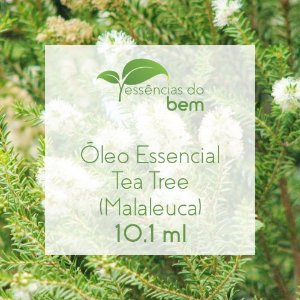 ÓLEO ESSENCIAL DE TEA TREE (QT TERPINEN-4-OL) GT BRASIL ORG. 10,1ML