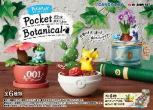 SET POKEMON: POCKET BOTANICAL: 1BOX (6PCS)