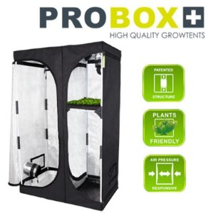 Estufa ProBox Indoor 100PL