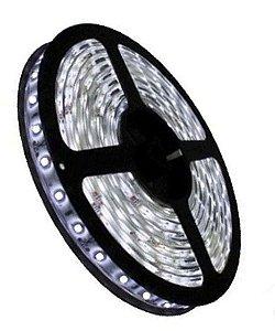FITA DE LED 5050 IP20 6000K 5 METROS