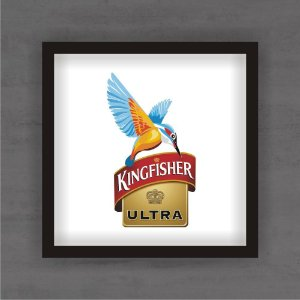 Quadro Decorativo Kingfisher Com Moldura