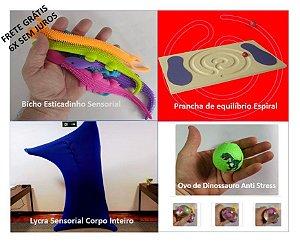 Kit Reguladores (Bichinho Esticadinho, Prancha Equilíbrio, Lycra Sensorial e Bola Aliviadora de Ansiedade)