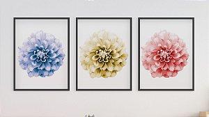 Kit 3 Quadros Infantil/Juvenil Colorful Dahlia Flower