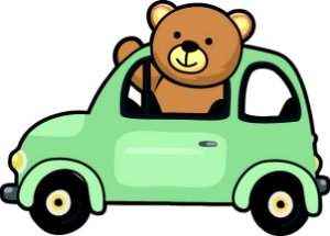 VS0078 URSO NO CARRO
