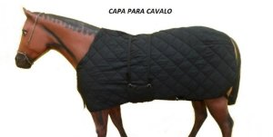 CAPA DE CAVALO