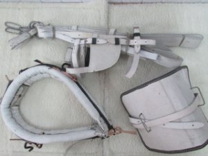 Arreio de Carroça - Sola Cromo - Completo