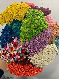 Flor Desidratada Sempre Viva 34cm - MARICOTA FESTAS