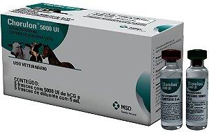 Chorulon 5000 u.i. Gonadotrofina HCG - Caixa com 5 unidades