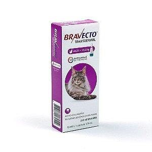 Bravecto Antipulgas e Carrapatos Transdermal para Gatos de 6,25 a 12,5 kg