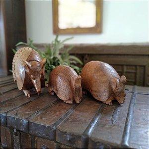 Trio de Esculturas de Tatu em Madeira Entalhada Decorativo - P M G