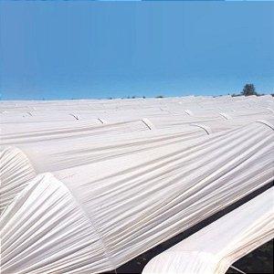 Túnel Leitoso - 2,00m X 100m Ref 75 Material 100% Virgem