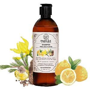 Shampoo Baunilha e Óleo de Argan Hipoalergênico, sem parabenos e sem sulfatos 500 ml