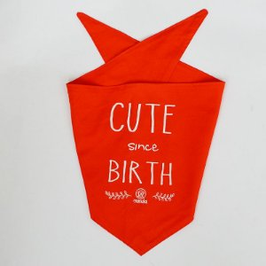 Bandana Cute since Birth - 2 cores