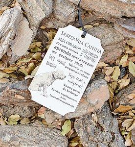 Placa Sabedoria Canina