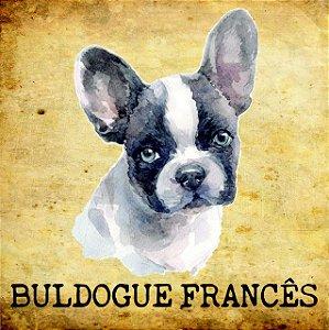 Placas de Buldogue Francês - várias coleções