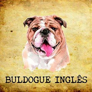 Placas de Buldogue Inglês