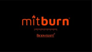 Mitburn 100mg 30 caps *Com Selo de Autenticidade