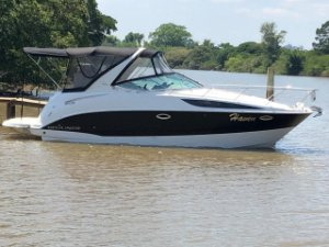 Bayliner 310BR - Haven  2012