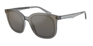 Giorgio Armani AR8136 Transparent Grey Lentes Light Grey Mirror Grad Silvere