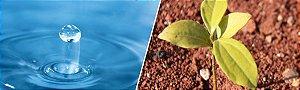 DUPLICADO - Análises de água e solo