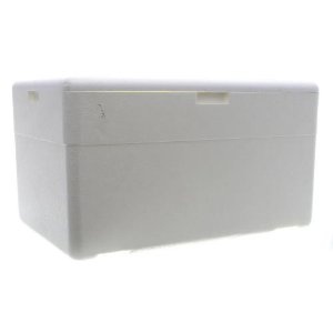 Caixa Termica 40 Litros Isoterm 40 Lt