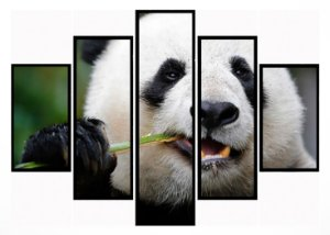 Quadro Mosaico 5 Partes  Panda Comilao Moldura Preta Art e Cia