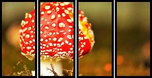 Quadro Mosaico 4 Partes Reto Cogumelo Vermelho Art e Cia Preto