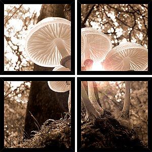Quadro Mosaico 4 Partes Quadrado Cogumelos Brancos Art e Cia Preto