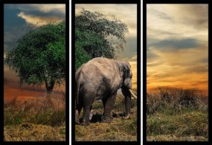 Quadro Mosaico 3 Partes Reto Elefante Art e Cia Preto