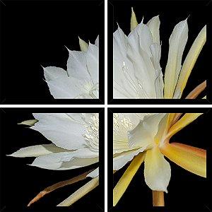 Quadro Mosaico 4 Partes Quadrado Epiphyllum Branca Art e Cia Preto