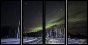 Quadro Mosaico 4 Partes Reto Aurora Boreal Arvores Secas Art e Cia Preto