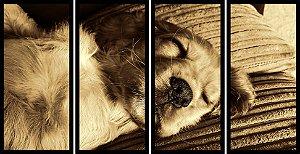 Quadro Mosaico 4 Partes Reto Cachorro Domindo Art e Cia Preto