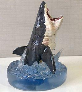 Diorama de Tubarão Branco (Carcharodon carcharias)