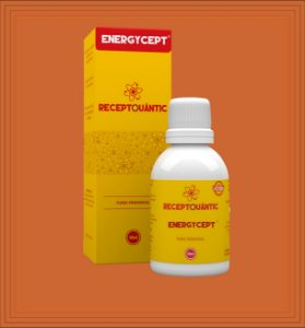 ENERGYCEPT 50ml - Receptquântic Fisioquântic