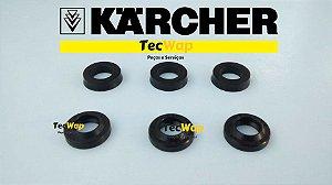 Kit Gaxeta+ Kit +retentor dos pistão Karcher 310-330 k2-K3