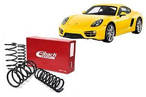 Mola Eibach Porsche Cayman 2.7 / S3.4 2013+ (40)