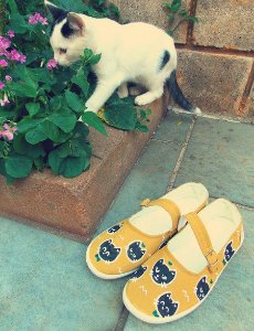 Sapatilha Cat Mostard