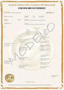 Registro de Ninhada (Felino)