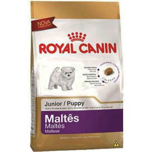 Ração Royal Canin Junior para Cães Filhotes da Raça Maltês