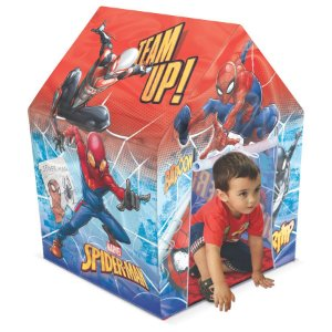 Centro de Treinamento Spiderman (2534)