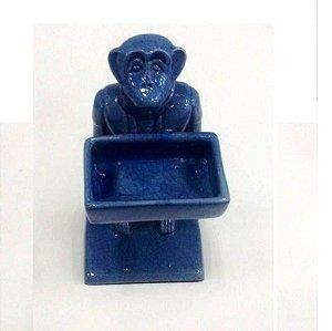 Macaco com caixa azul claro