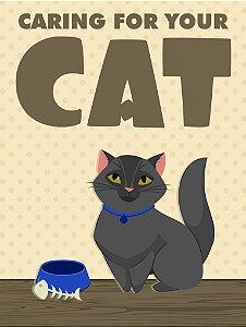 Cuidar do seu gato