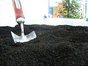 TERRA VEGETAL ADUBADA – Pronta para o plantio - 1Kg