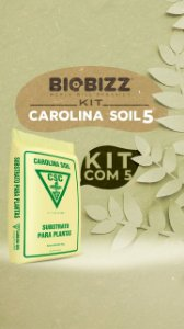 KIT CAROLINA SOIL - 5 SACOS
