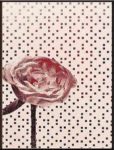 Flores VII