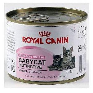 Kit Projeto Vida Animal Baby Cat