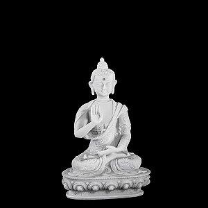 BUDA NEPAL MUDRA PROTEÇÃO 11 CM