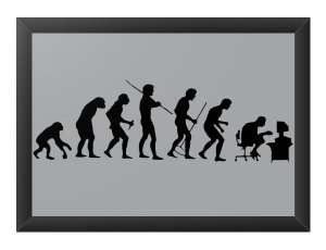 Quadro Decorativo A4 (33X24) Evolution - Loja Nerd e Geek - Presentes Criativos