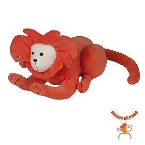 Mico Leão