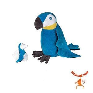 Arara Azul Grávida com 1 Filhote